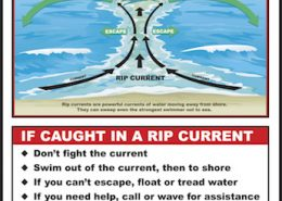 Understand How to Spot a Rip Current