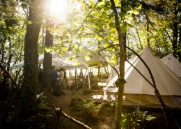 hen-party-wild-campsite-woodlands-bell-tents-sunny-cornwall